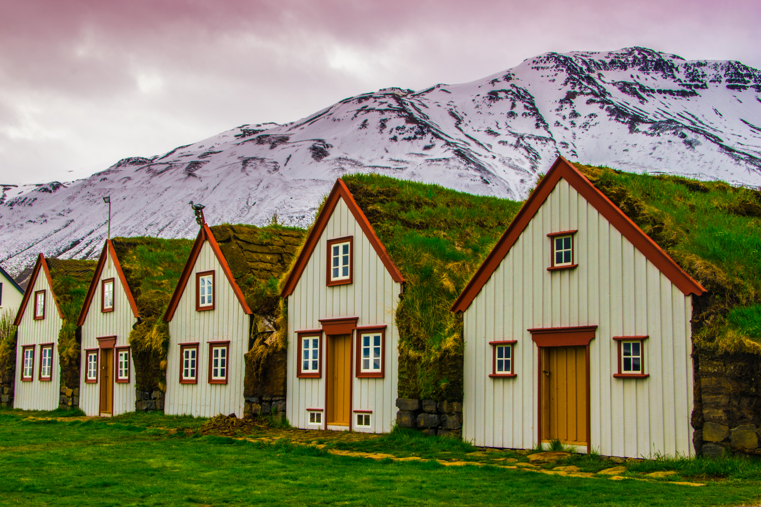 Houses by the side of the road in Iceland